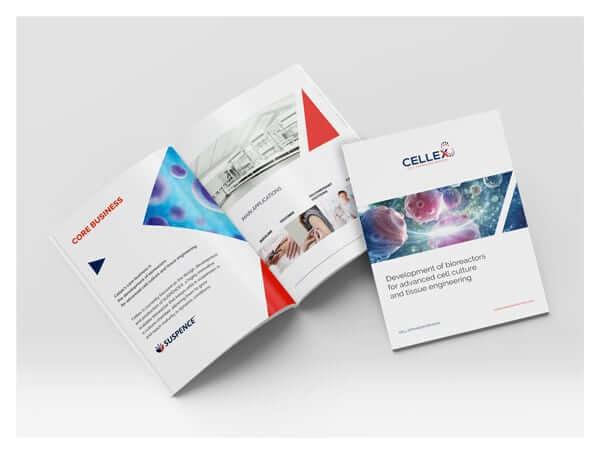 brochure esempi